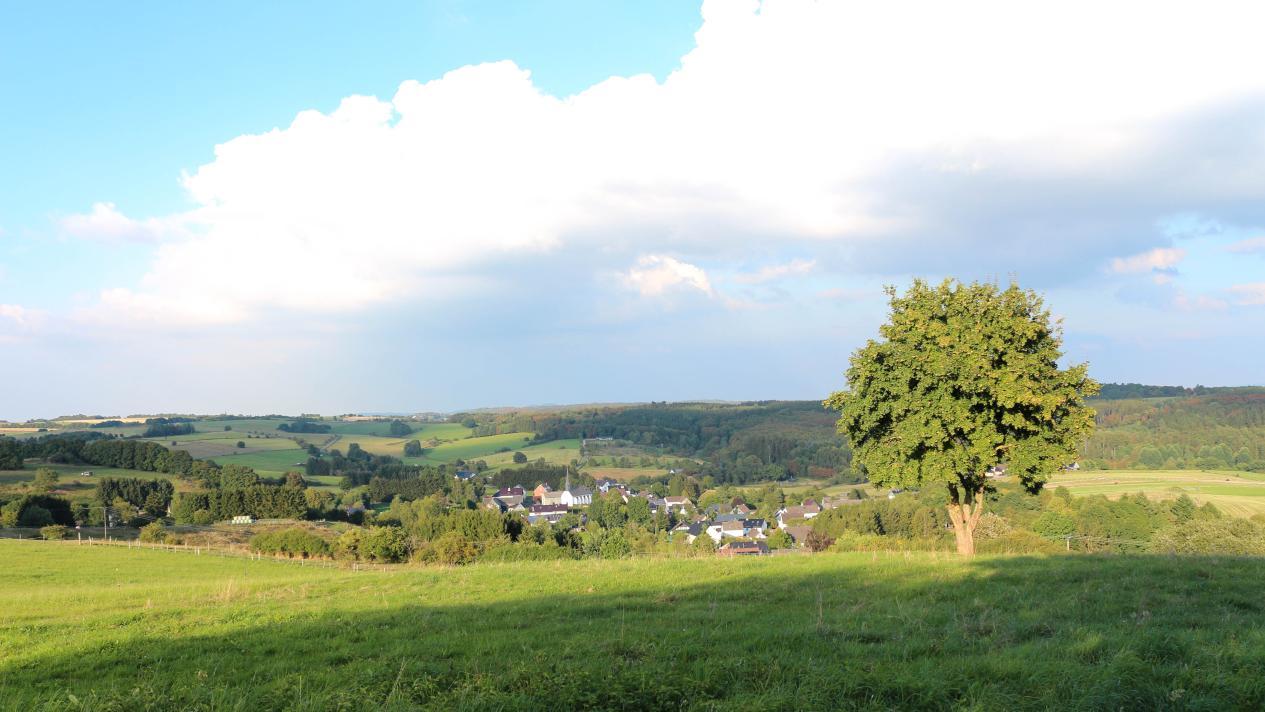 Mülheimer Heide