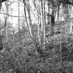 Bergbau Foto2