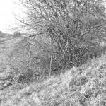 Bergbau-Foto4